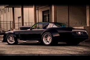 TRANS AM BLACK DOG by ROOF01