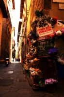 Little shop in Florence by zeciszon