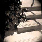 Film picture 14: stairs by SquishyPandaPower
