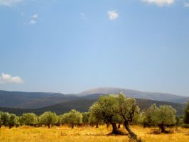Greek landscape by araXne