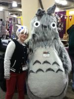 Totoro and Soul by jt0002