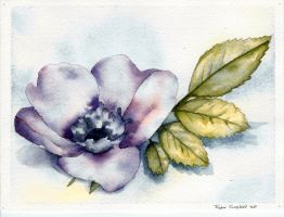 Flower Watercolor by seenoevilspeaknoevil