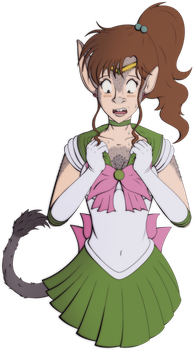 Donk of the Month - February: Sailor Jupiter by VioletRosefall