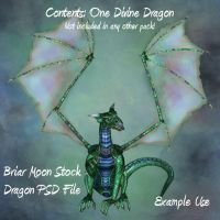 Single Dragon PSD File by briarmoon-stock