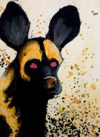 The Painted Dog by Snipetracker