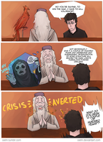 Harry Potter - Wizard Logic by Oelm