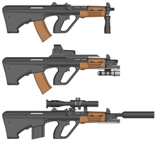 Motherlands AUG + DMR Variant by SpectraTaika