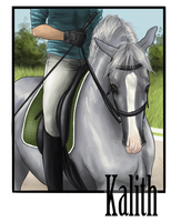 Kalith Dressage Training by Wakimi