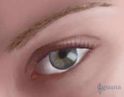 Drawing Eyes in Photoshop by lady-iguana