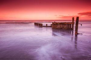 D R E A M E R by Photographystev