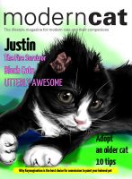 Modern Cat cover 2013 by Keymagination
