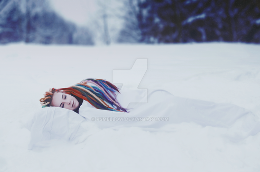 Winter Dream by psMellow