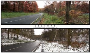 Seasons by Joshsherwood