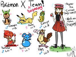 My Pokemon X Beginner Team by KiraNohara