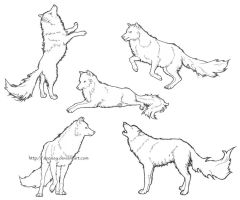 Wolf Dog Sketches by ReQuay