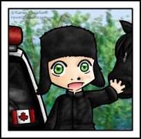NCIS - McGee in Canada by ryuuri