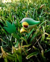 wild snivy appeared by tentacrab