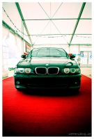 Red Carpet by PvP