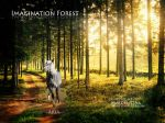 Imagination Forest by MaidenStar