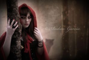 Hiding From the wolf by AndyGarcia666