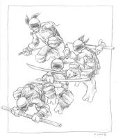 old 2002 TMNT #2 by mooncalfe