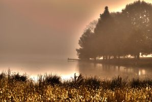 morning fog on pond by Tommy8250