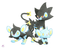Shinx Family by BuizelCream