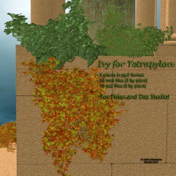 Ivy for Tetrapylon (freebie) by AelinNamarie
