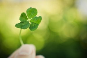 Four-leaf clover II by flyktplan