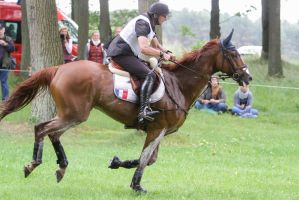 3DE Cross Country Water Obstacle Series II/7 by LuDa-Stock