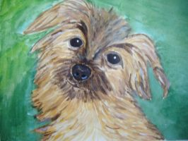 Sweet Puppy by valilia