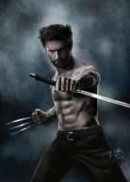 Hugh Jackman in Wolverine by fRancisChong