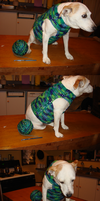 Dog Sweater by Baby-Cougar