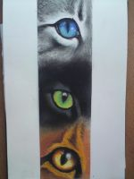 eyes of the Three by DinofelizC