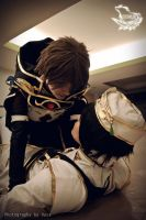 Lelouch and Suzaku 2 by Shaaarix