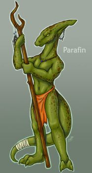 Parafin the Lost by Kata
