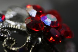 Close-up: Red Jewelled Hairpin by iEatIceCubes