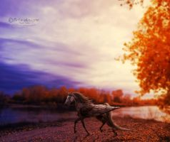 Autumn Daylight by Bela-designs