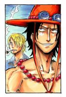 Ace n Sanji by CoralSnake