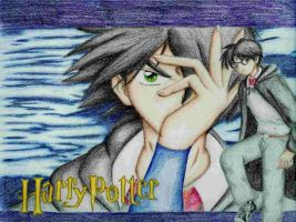 Harry Potter by blackdragon21