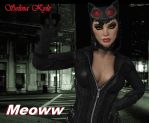 Selina Kyle, Catwoman by dnxpunk