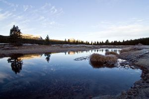 Tuolumne River Yosemite-41 by arches123