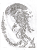 Predalien Of War by TITANOSAUR