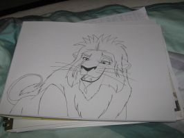 My Lion King OC shot by MortenEng21