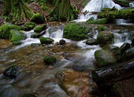 Coal Creek II by cjosborn