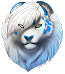 Fro Test thingie by AFrozenHeart