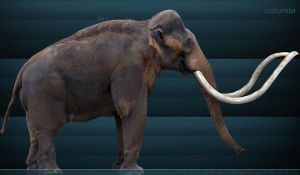 columbian mammoth by serchio25