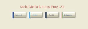 Social Media Buttons, Pure CSS by MelikeBAt