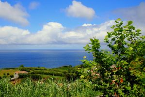 by the sea at West azores by neeuq2006