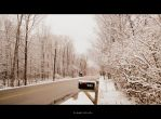 First Sign of Snow. 11 by Sparkle-Photography